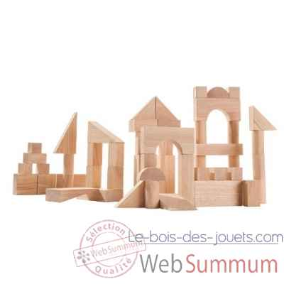 Blocs de construction 50 pieces Plan Toys -5502