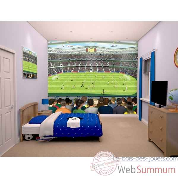 Fresque murale football Room studio -41769